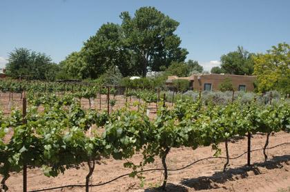 Milagro Winery