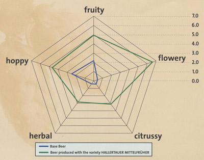 Mittelfrueh aroma