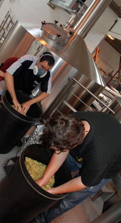 Breaking up hops at Meantime Brewing