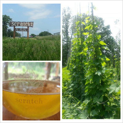Scratch Microbrewery & Farm
